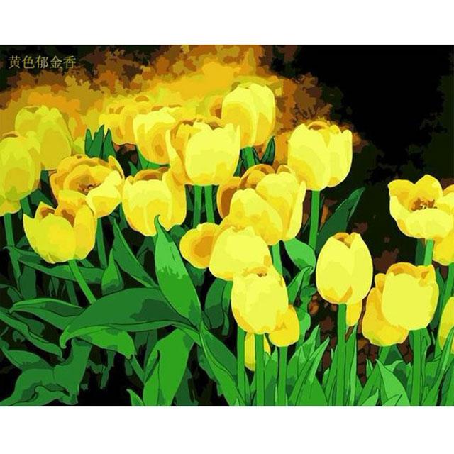 舞动色彩 DIY数字油画 黄色郁金香 40×50cm(手绘油画 创意家居)