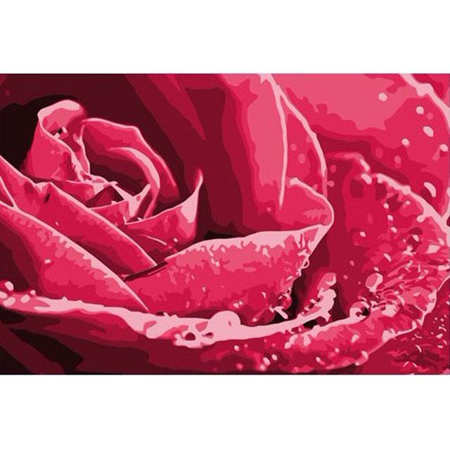 舞动色彩 DIY数字油画 滴露玫瑰 40×50cm(手绘油画 创意家居)